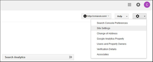 Set Canonical Domain on Google Search Console